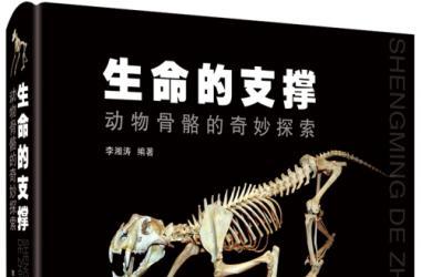 喜報   我社《生命的支撐--動物骨骼的奇妙探索》《家庭急救知識圖解》《全科常見病例診療思維》入選2021上海市優秀科普作品